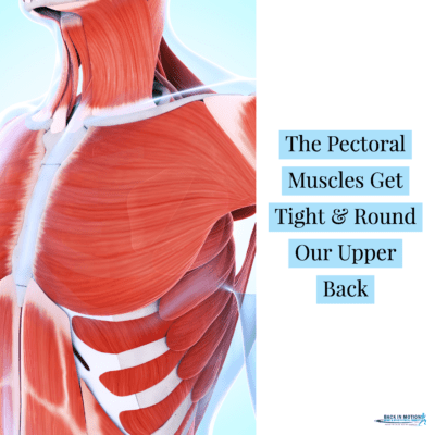 When the pectoral muscles get tight they limit thoracic rotation
