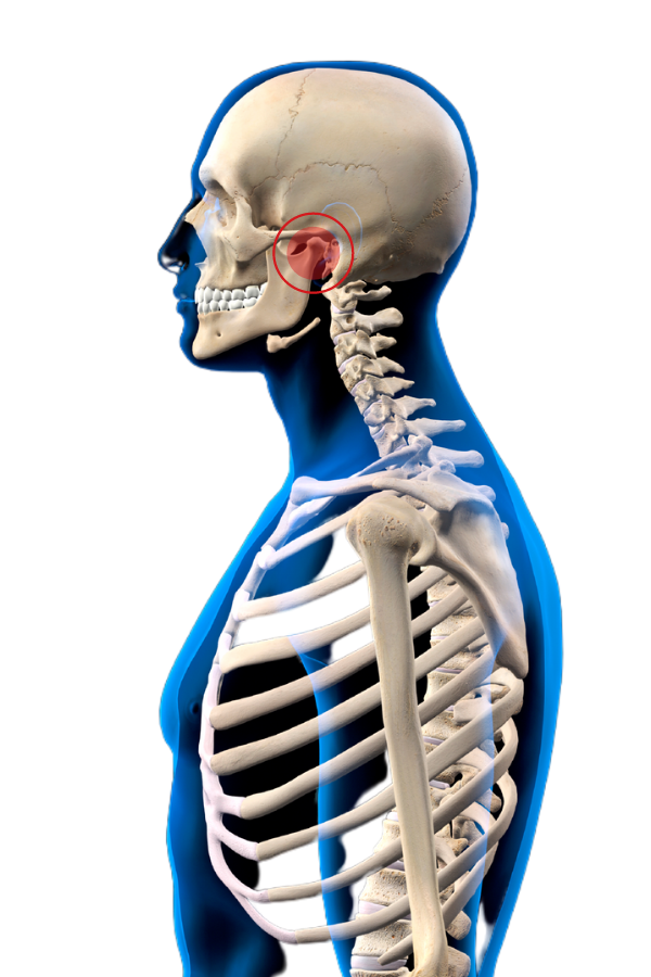 TMJ Treatment in Fort Myers, FL